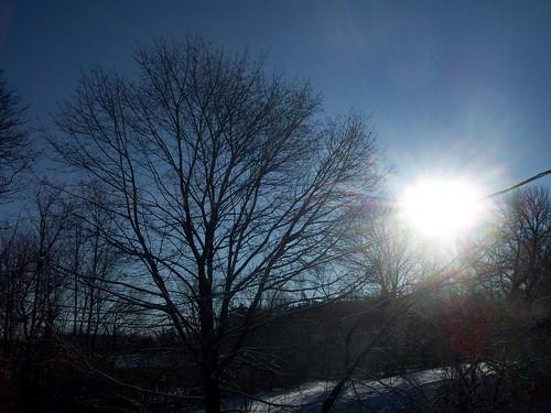 Snow_12012c