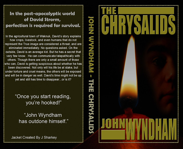 chrysalids 6 This world exists in john wyndham's novel, the chrysalids this is the world of david strorm, the main character in the novel as a young child, he often dreamed of .