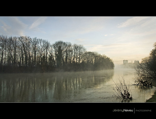 reflection sunrise frog brouillard brume marne