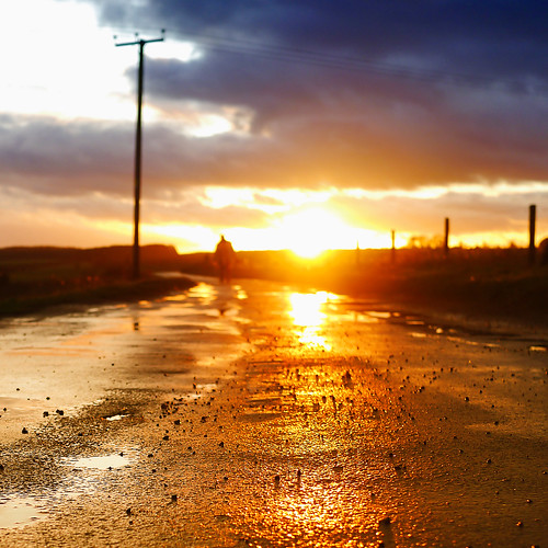 road sunset english rural square golden mood sundown dusk perspective atmosphere scene cotswolds surface pole typical telegraph snowshill