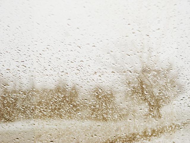 snowy_18