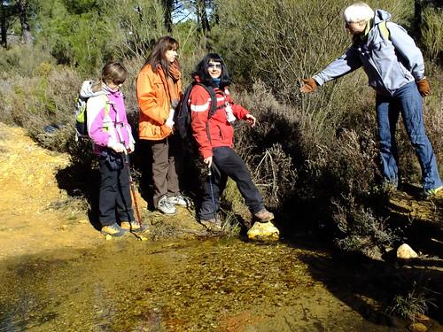 Pinares de Tabuyo del Monte