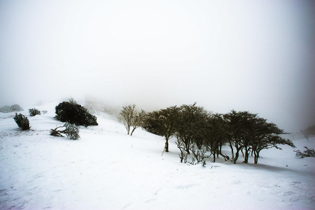 Nara Mt. Miune