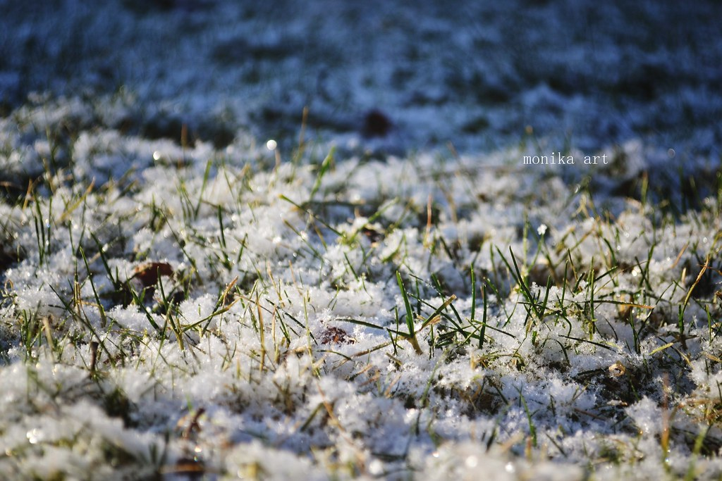 35/366 - cold winter morning
