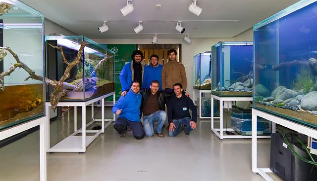 Faao aquascaping fluvi rio de mora 39 all aquariums for Aquarium 120l