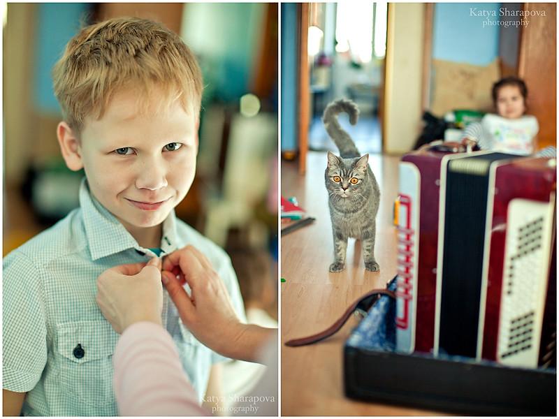 фото у насти котята2
