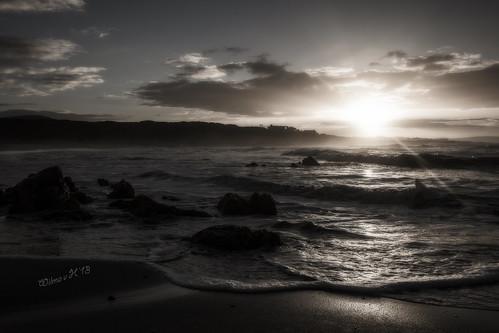 monochrome hermanus sepia sunrise southafrica lensflare beaches atlanticocean sunflare onrus westerncape ortoneffect onrusstrand