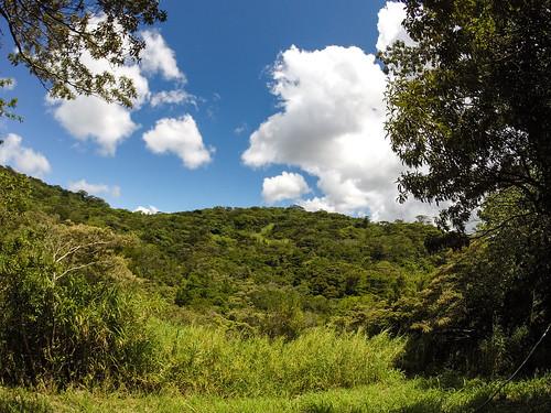Monteverde: les tyroliennes, c'est déjà fini. Snif ;)