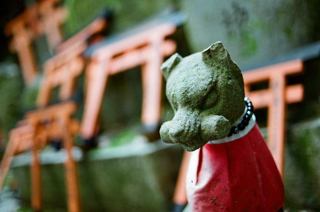 伏見稻荷 京都 Kyoto, Japan / Kodak ColorPlus / Nikon FM2 開始挑戰走稻荷山,還好一路上都包圍在樹林裡。  這應該是祖先住的地方吧,但吸引我注意的是稻荷神狐狸的雕像,這裡有很多!  Nikon FM2 Nikon AI AF Nikkor 35mm F/2D Kodak ColorPlus ISO200 0993-0014 2015/09/29 Photo by Toomore