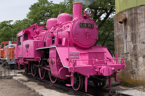 Pink SL at Wakasa Railway (8)
