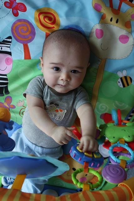 Vincent - 4 months old