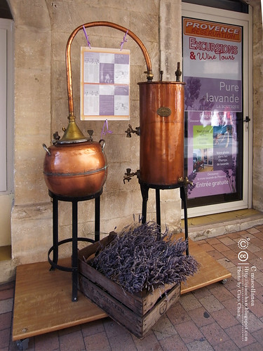 Bonjour Avignon~ 亞維農。香料草味兒的城市  R1041945