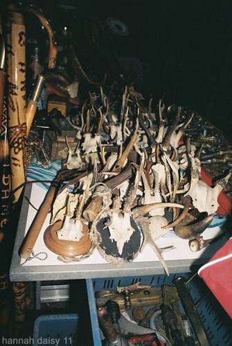 Bones, Flea Market, Berlin