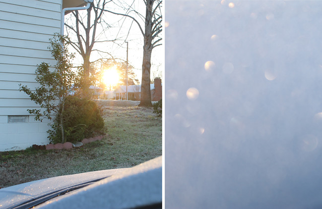 frost_photo7