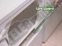 Lint Lizard 1