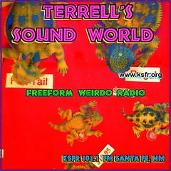 Terrell's Sound World Facebook Banner