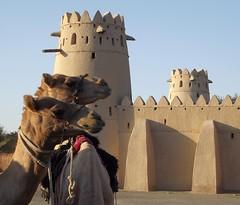 Al Jahili Fort, Al Ain