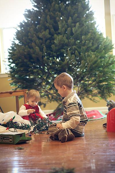 Christmas tree 2011-7
