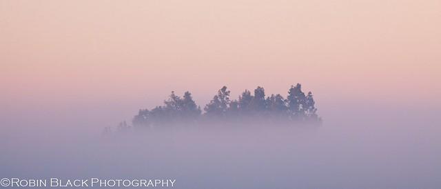 Foggy Sunrise (pano crop), Sierra Foothills