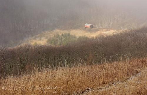 roanmountainphotos roanmountainart roanmountainphotography northcarolanamountainsphotography roanmountainphotographer