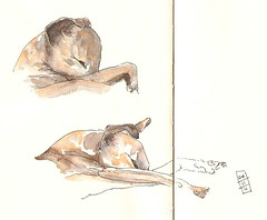 24-11-11c by Anita Davies