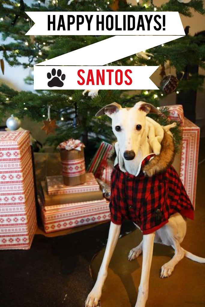 Santos Happy Holidays