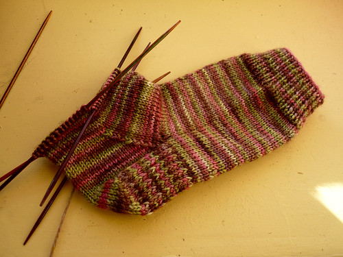 Apple Blossom socks for Molly