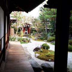 奥の祠の右側にあるのが、小野篁さんが出入りしてた井戸。