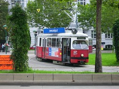 Tram of Wien