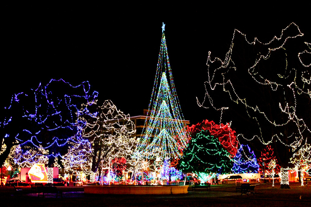 Rotary Lights at Riverside Park