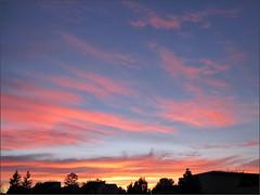 Sunrise, 12/31/11