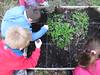 Ricominciamo a coltivare nelle scuole 29