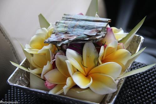 Curiosidades de Bali