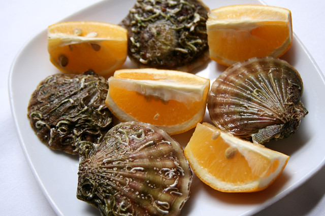 seashell with lemon