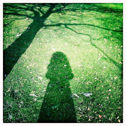 Ghost me and a tree - shadows