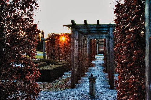 Arboretum Sunrise by D J England