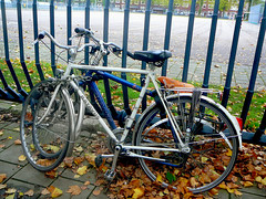 Batavus Champion sportfiets (traditional sports bicycle, v�lo mi-course traditionnel), Amsterdam, Olympiaplein, 10-2011
