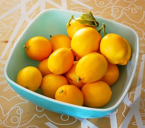 LemonYogurtCake1