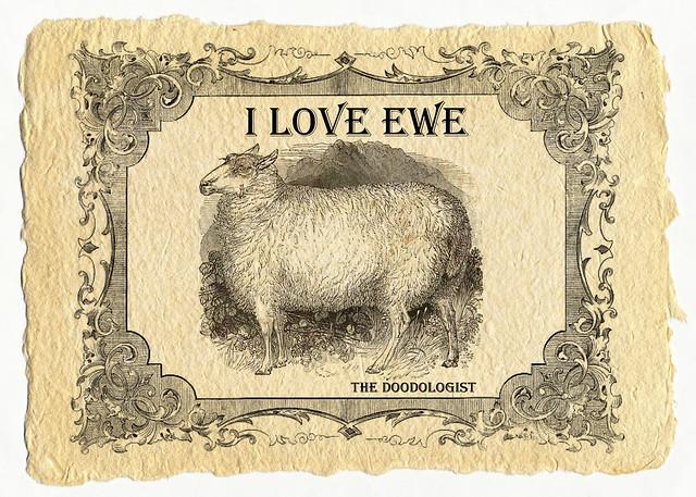 I love ewe (web)