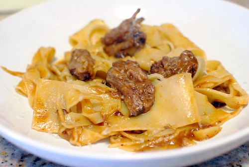 6682918079 48429866dd Pappardelle with Oxtail Ragu