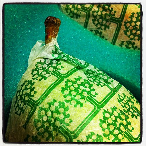 {Day 12: Closeup} Round Two of Winter Pears! Also: DELICIOUS SMELLING Foam Packaging! #janphotoaday