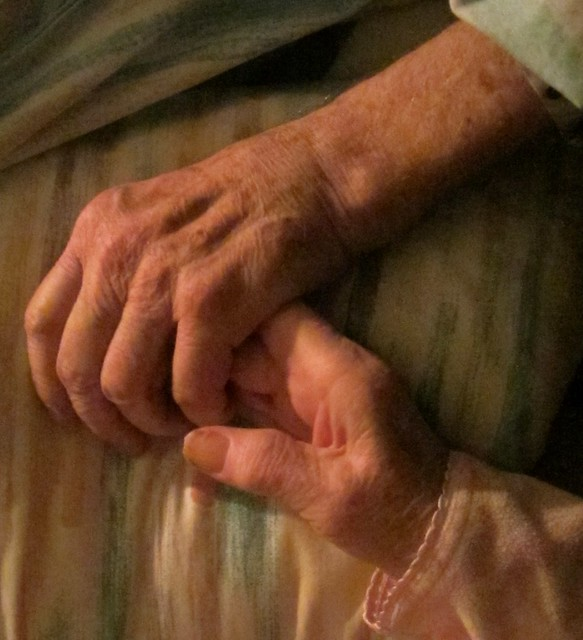 Mom and Dad's Hands