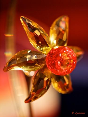 Flor de cristal by Maclympico320