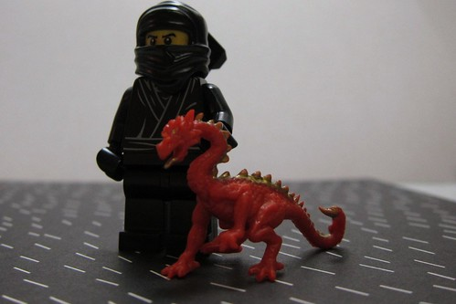 A ninja and his dragon - 2012 year of the dragon