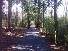 Wells Tract Trail