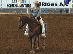 animal sports, rodeo, equestrianism, western riding, mare, stallion, equestrian sport, sports, western pleasure, reining,