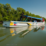 Dagupan's Dawel River Cruise: Bangus Harvest and Mangrove Swamps