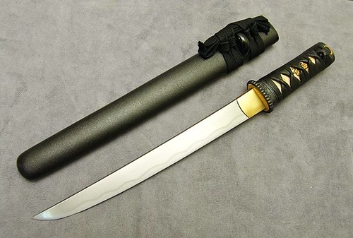 "Hanwei Practical Plus 11"" Tanto Blade From Paul Chen Ray Skin Handle"