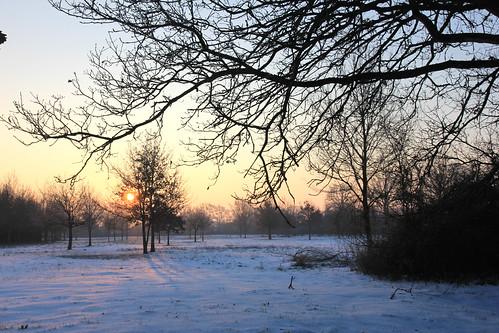 IMG_4883_sous la neige