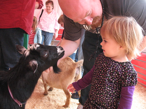 The petting zoo at the Fort Worth Stock Show